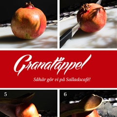 """How to"" for Salladscafé Papaya"